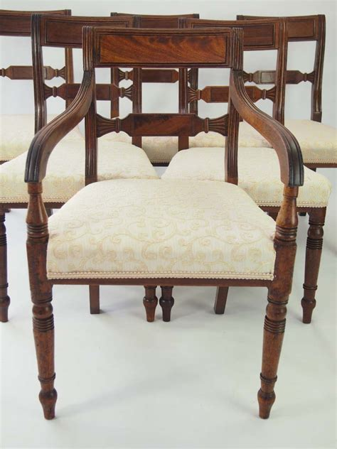 mahogany dining chairs for set 6 antique regency mahogany dining chairs for 9106