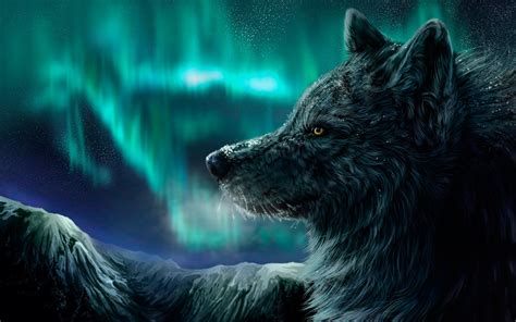 1080p Wolf Wallpaper Hd by Iwallpapers Beautiful Hd Wallpapers 1080p