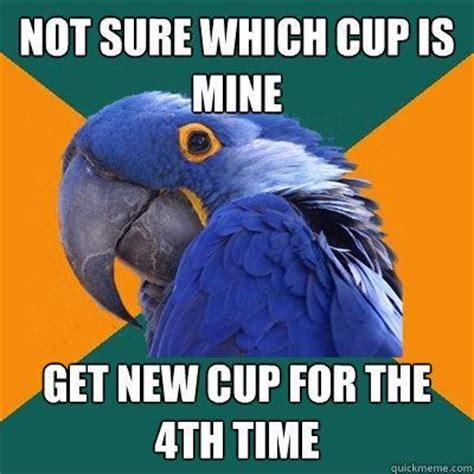 Paranoid Parrot Meme - paranoid parrot collection 1 mesmerizing universe trend