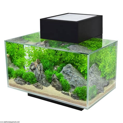 fluval tanks fluval edge 23l black seahorse aquariums ltd