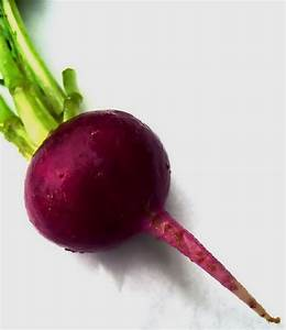 Learn How To Grow Beets In The Garden