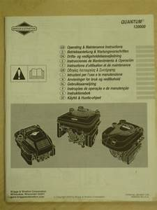2003 Briggs  U0026 Stratton Quantum 120000 Operating