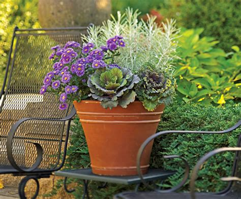 fall container planting ideas fall container gardens