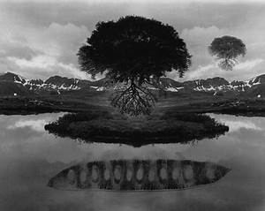 The Artistic Se... Jerry N Uelsmann Quotes