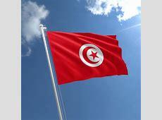 Small Tunisia Flag Tunisian Flag 3x2 ft The Flag Shop
