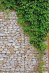Steine Für Eine Mauer : aufgef llte steine drahtk rbe aus feuerverzinktem stahl werden als mauer immer beliebter mit ~ Michelbontemps.com Haus und Dekorationen