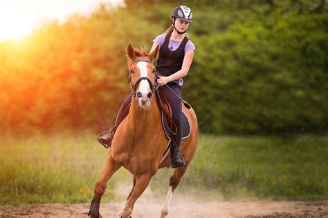 riding horse destinations magical vacation