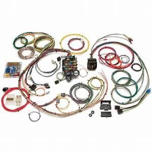 Painless 20101 1967 Firebird 24 Circuit Wiring Harness