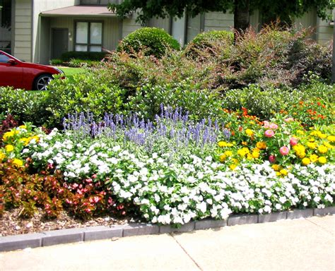 Planting Your Summer Flower Garden  Bossier Presstribune