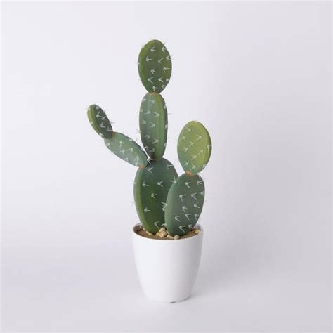 faux mohave cactus hoxtonstore