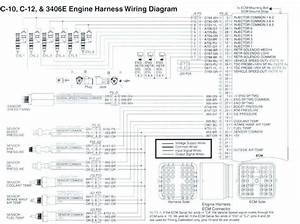 Cat 70 Pin Ecm Wiring Diagram Pdf