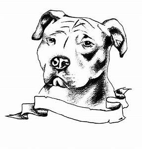 7 Pit Bull Dog Tattoo Designs and Stencils