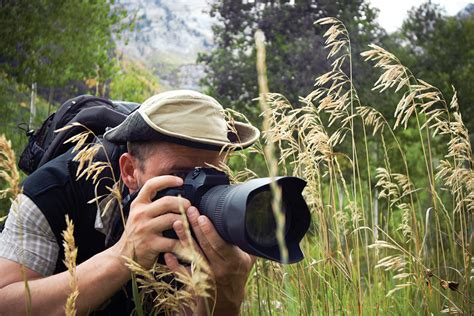 tips  shooting wildlife ruralite magazine