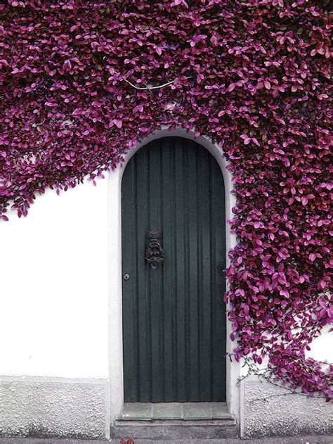 beautiful doors   world