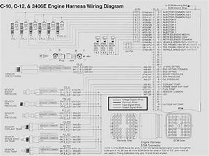 C15 Wiring Schematic To Ecm