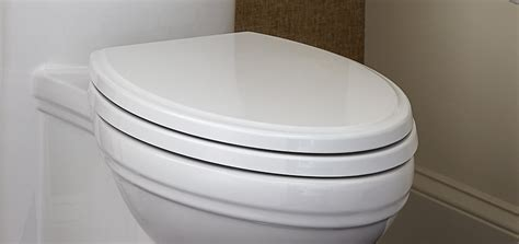 toilet seats dxv luxury elongated   front toilet