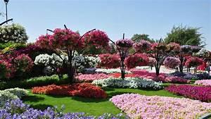 Flower Gardens Wallpapers ·①
