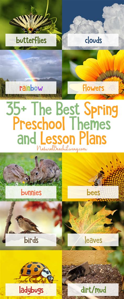 35 the best preschool themes and lesson plans 719 | Preschool Themes
