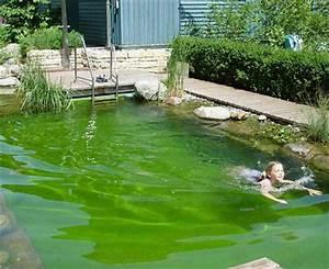 Schwimmteich Im Garten : schwimmteich bild 11 living at home ~ Sanjose-hotels-ca.com Haus und Dekorationen