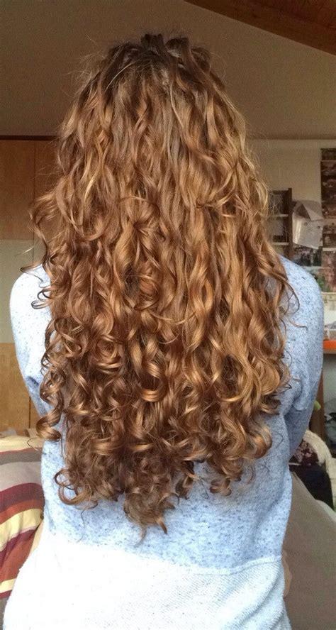 curly hair shampoo ideas  pinterest shampoo