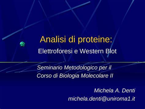 dispense biologia molecolare analisi di proteine elettroforesi e western blot dispense