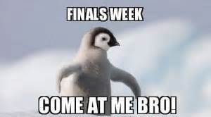 funny motivational quotes for finals