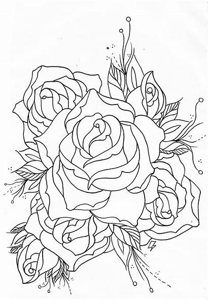 Outline Rose Tattoo Drawing Tattoos Roses Outlines