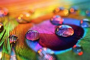 The Beautiful Rainbow Colors Photography: 33 Superb ...