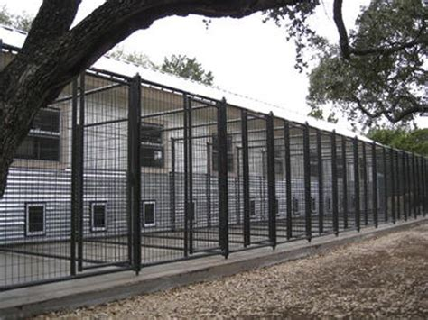 boarding kennels 33 indoor outdoor runs comfortable inside rooms play yards flanked