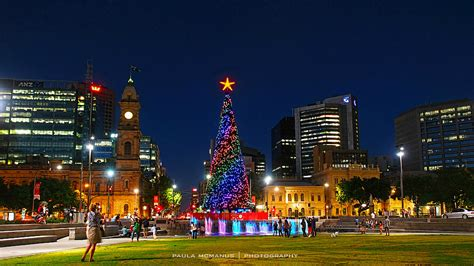 victoria square christmas tree adelaide