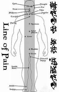 Self Defense Pressure Points Chart Why Wingchun Concentrates On Protecting The Middle Of Your