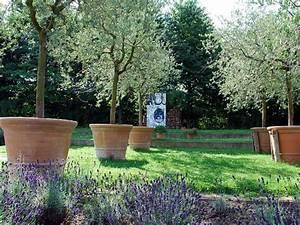 Quand Planter Lavande Dans Jardin : jardin maison quoi planter int rieur ext rieur exceptionnel que planter dans son jardin avec ~ Dode.kayakingforconservation.com Idées de Décoration