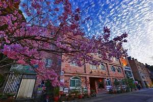 chiayi taiwan discover alishan and many other beautiful