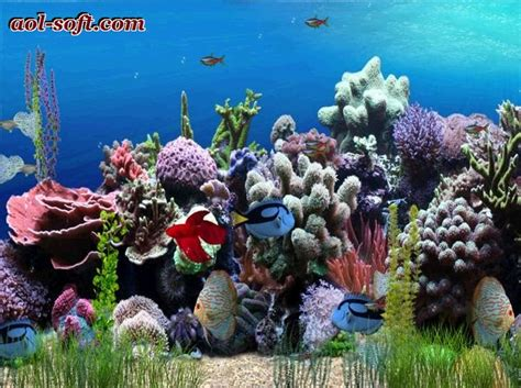 Animated Fish Tank Wallpaper Windows 7 - free animated aquarium desktop wallpaper wallpapersafari