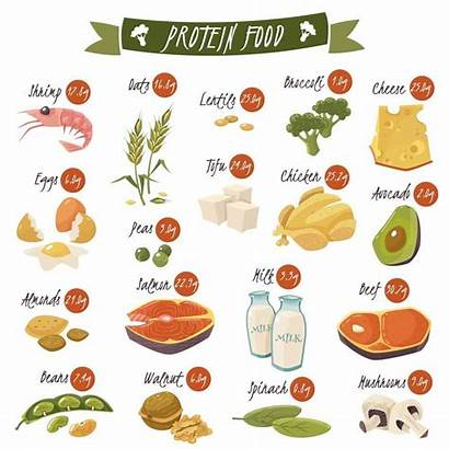 Protein Foods Rich Non Fat Fast