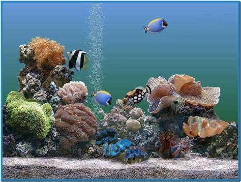 Free Animated Aquarium Desktop Wallpaper For Windows 7 - aquarium desktop animated screensaver free
