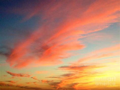 fall sky photograph  bridgette gomes
