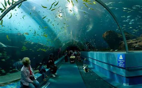aquarium a visiter en visiter barcelone aquarium de barcelone