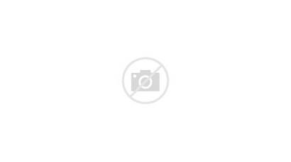 Gartner Cloud Enterprise Software Global Spending Drive