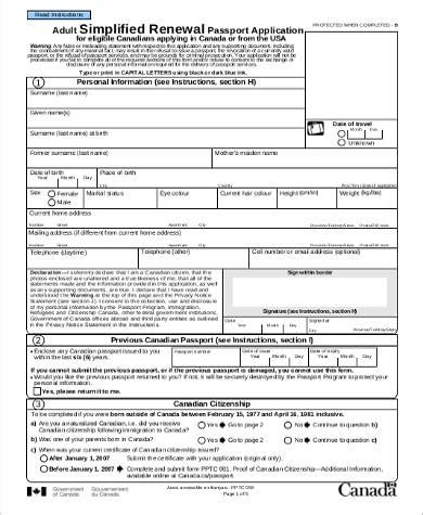 Sample Passport Renewal Application Form  4+ Examples In