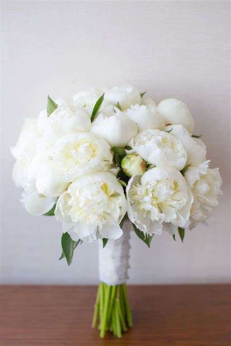 ideas  white peonies  pinterest white