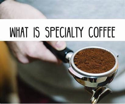 Coffee Specialty Speciality Cup Royal Rise Specialtycoffee