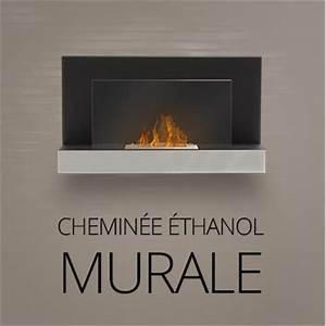 Chauffage à L éthanol : chemin e bio l 39 thanol chauffage design ~ Premium-room.com Idées de Décoration
