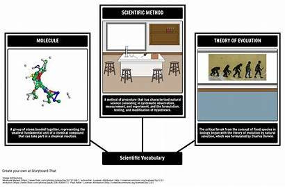 Visual Science Vocabulary Examples Example Storyboard Storyboards
