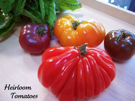 heirloom tomatoes heirloom tomatoes archives proud italian cook