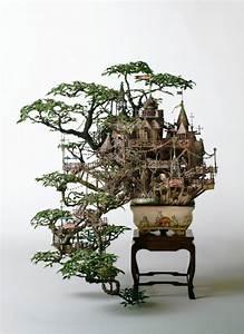 wunderschone bonsai baum kompositionen With garten planen mit bonsai growing kit
