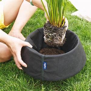 Plante Filtrante Pour Bassin : laguna panier flottant de plantation pour bassin ~ Louise-bijoux.com Idées de Décoration