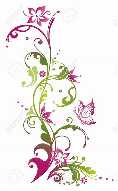 Border Butterfly Clipart Pink Swirl Flowers Colorful