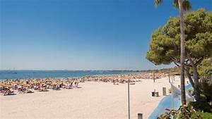 alcudia garden aparthotel offiziellen website hotel With katzennetz balkon mit playa garden hotel mallorca