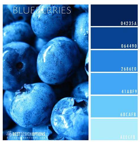 what color are blueberries blueberry color palette color palettes